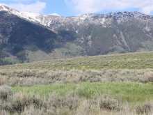 Lot 51 Madison River Ranches, Cameron, MT 59720
