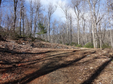 Lot 734 Rhododendron Drive, Old Fort, NC 28762