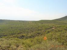 3900 Yoruba Basin Trail, Tombstone, AZ 85638