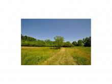 445 County Rd 1301, Cullman, AL 35058