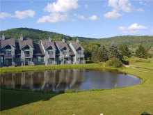 185 Wildflower, Ellicottville, NY 14731