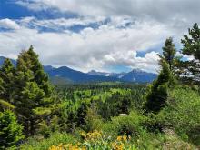 LV16 Livingston Peak, Livingston, MT 59047