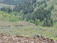 Lot 1 & Lot 5 Middle Fork Rd, Council, ID 83612