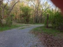 Vance Winstead Lane, Spring City, TN 37381
