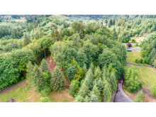0  Raptor Ridge, Woodland, WA 98674