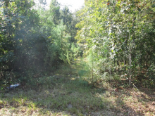 00 Canvas Back Road, Eutawville, SC 29048