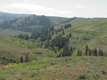 Lot 2 Middle Fork Rd, Council, ID 83612